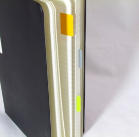 Moleskine-Professional-Notebook-Moleskine-Folio-Sticker-Tabs
